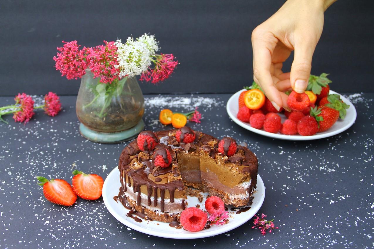 Raw Neapolitan Cake (Gluten & Dairy Free)
